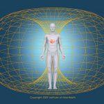 Αποκαλύπτοντας το ρόλο της καρδιάς στην ανθρώπινη συμπεριφορά – Έρευνες και Πειράματα