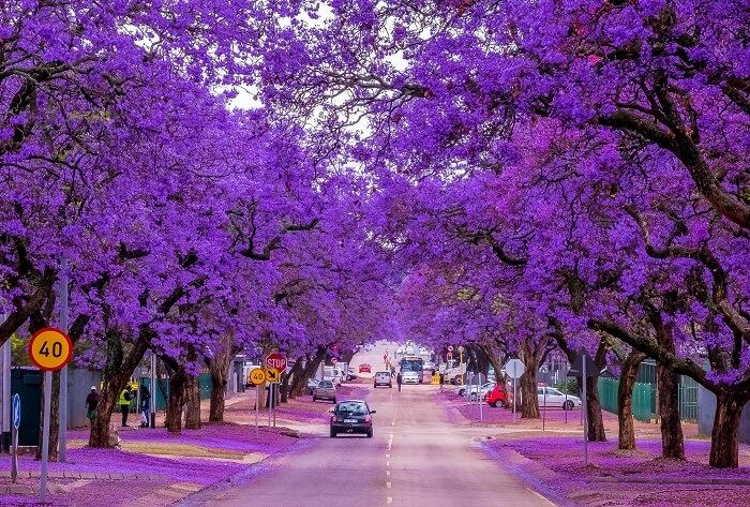 Οι πιο όμορφοι δρόμοι του κόσμου